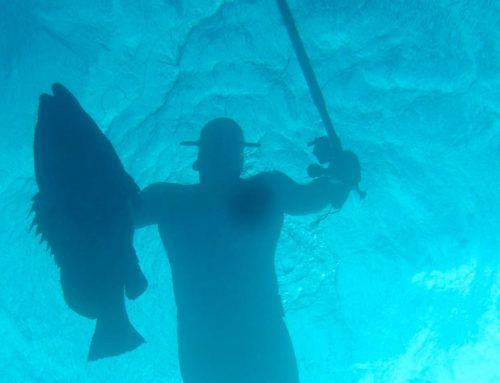Pesca submarina en el Palmar