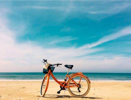 Rutas en Bici por La Janda
